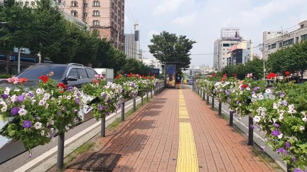 시흥대로 버스 정류장에 설치한 '가을꽃 걸이화분' 모습.